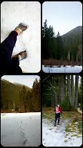 Upper Dungeness Winter Trail Run