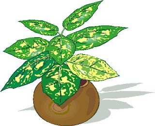 All Cliparts: Plant Clipart