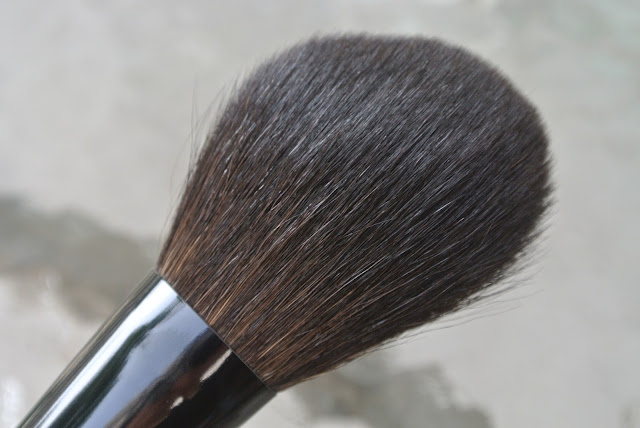 Powder Brush Up Close