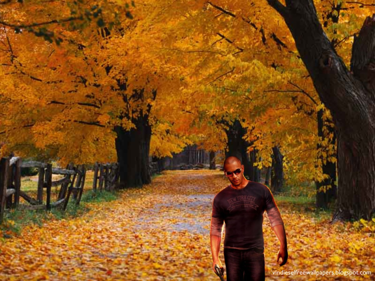 Wallpaper Of Vin Diesel Action Movie Actor Wheelman The Poster In Autumn Trees Background