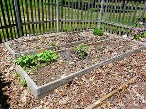Prepare for Your Spring Garden