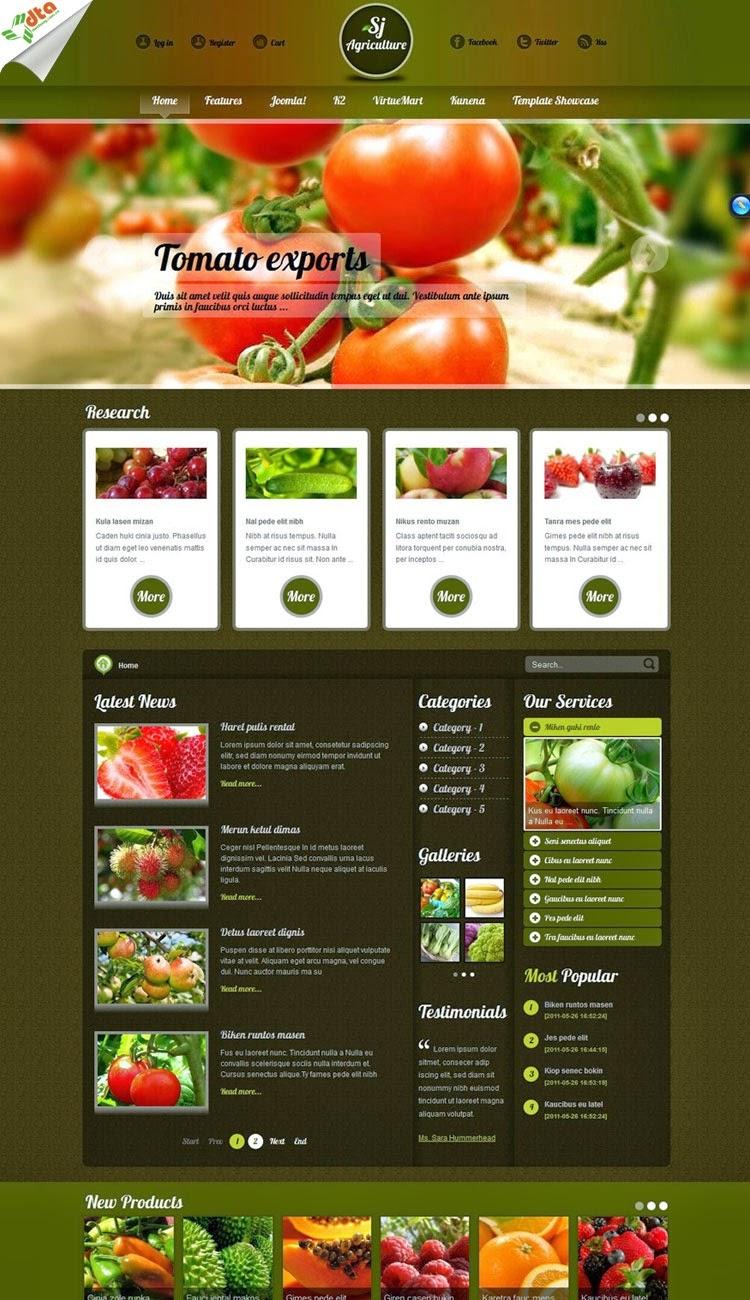 thiết kế website bán hàng bánh pizza đẹp
