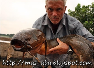 1. African Lungfish