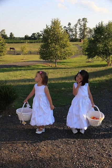 Wedding Ceremony Flower Girls Doukenie Vineyard| Whysall Photography