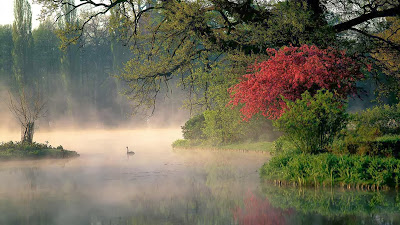 Wörlitzer Park, Wörlitz, Germany (© Giovanni Simeone/SIME/4Corners) 454