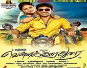 Watch Vellaikaara Durai (2014) DVD Tamil Full Movie Watch Online Free Download