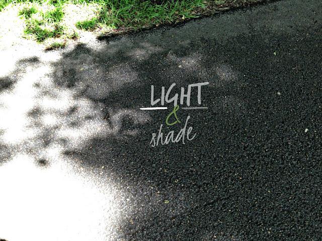 Light & Shade
