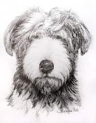 En una entrada anterior se mostraba un perro dibujado a plumilla, . rulalapizb