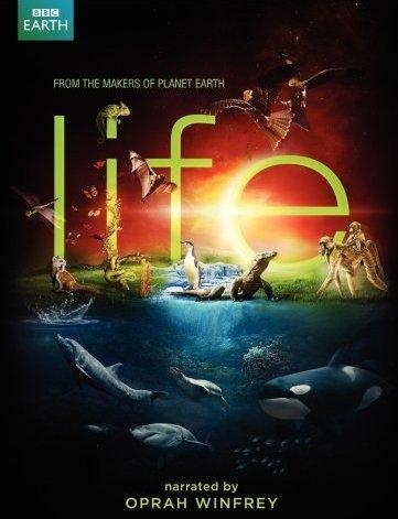 Khám Phá Cuộc Sống Động Vật - Life (2009)