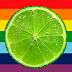 Ativismo gay made in USA