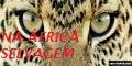 Na África Selvagem - Animais da África