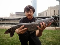 Photo of my last catch: