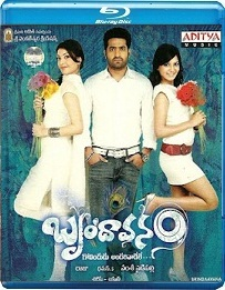 Brindavanam (2010) Eng Sub – Telugu Movie BluRay