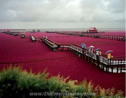 China red sea