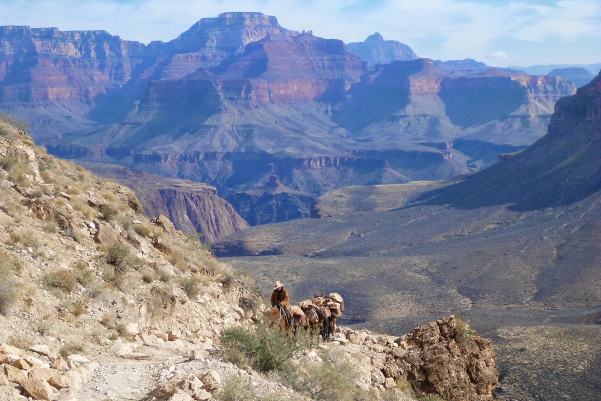 how to get bottom grand canyon