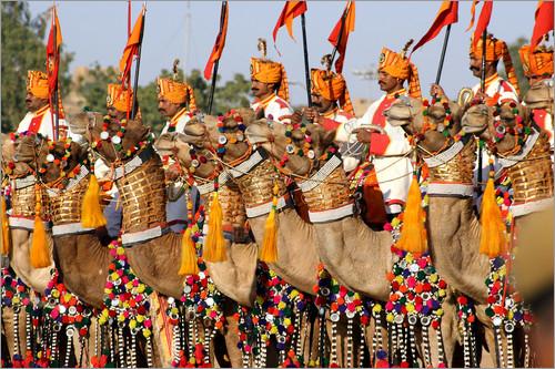 Camel Festival Bikaner,Rajasthan