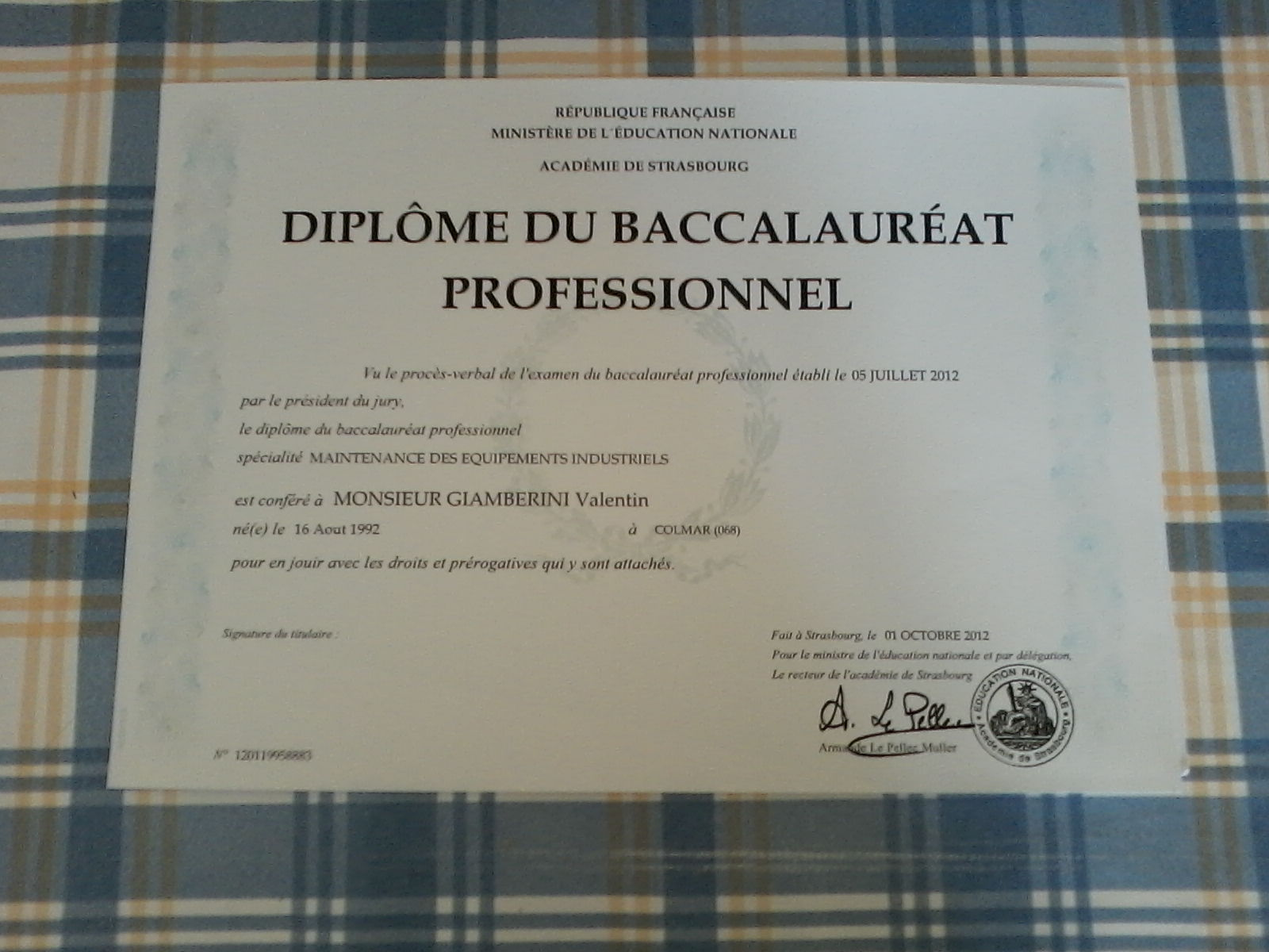 professionnel