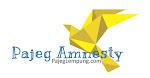Pajeg Amnesty