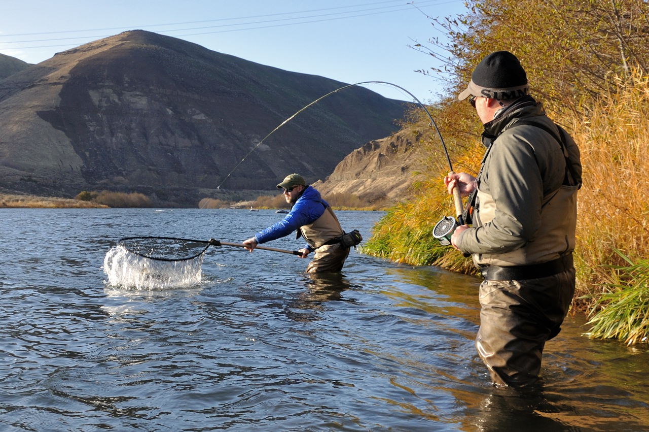Oregon fly fishing report by larimer outfitters december 2011 for Fishing report oregon
