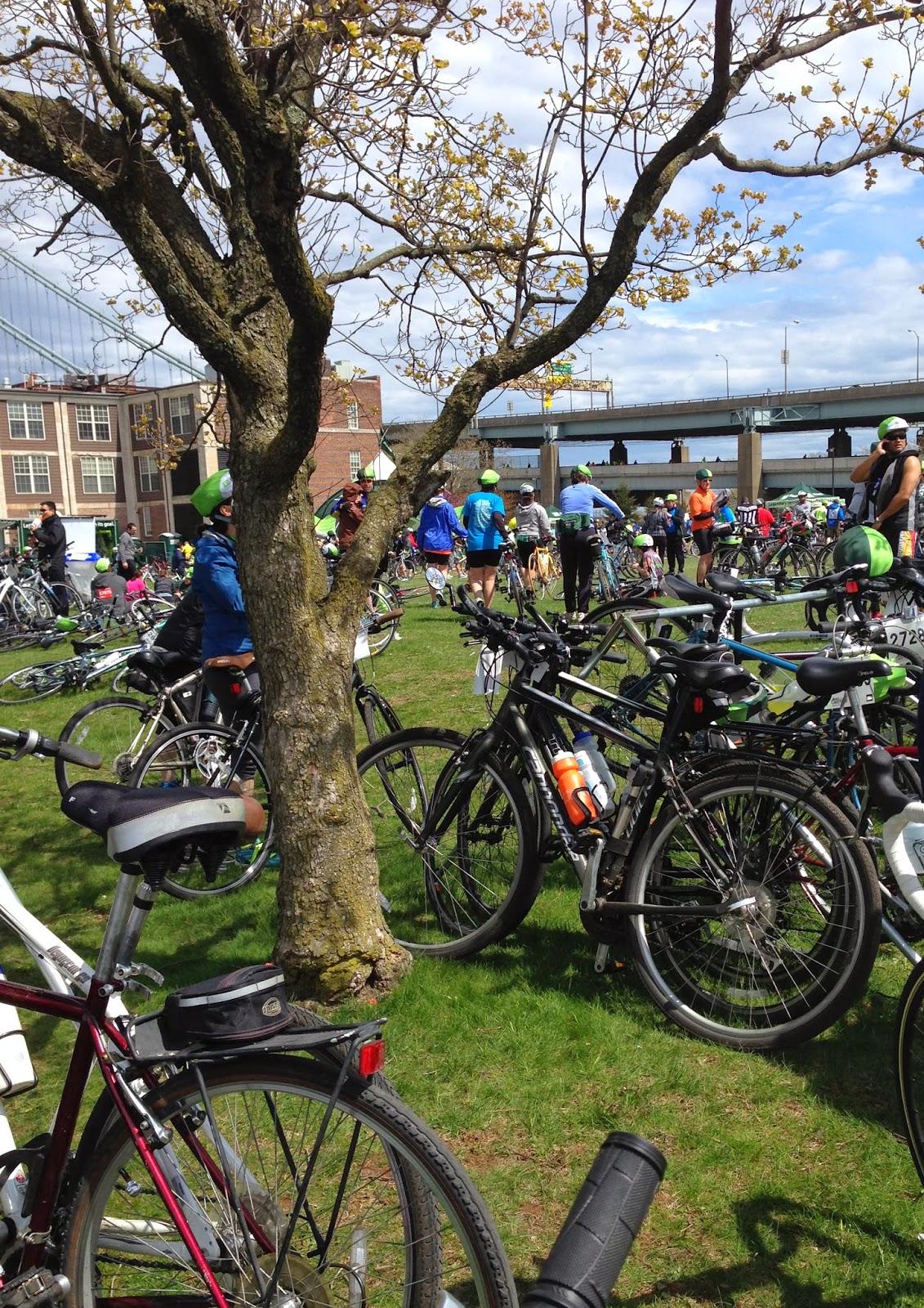 TD 5 boro bike tour festival