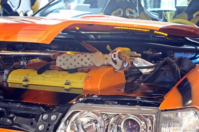 Cars Tuning World Bodensee Friedrichshafen 2013
