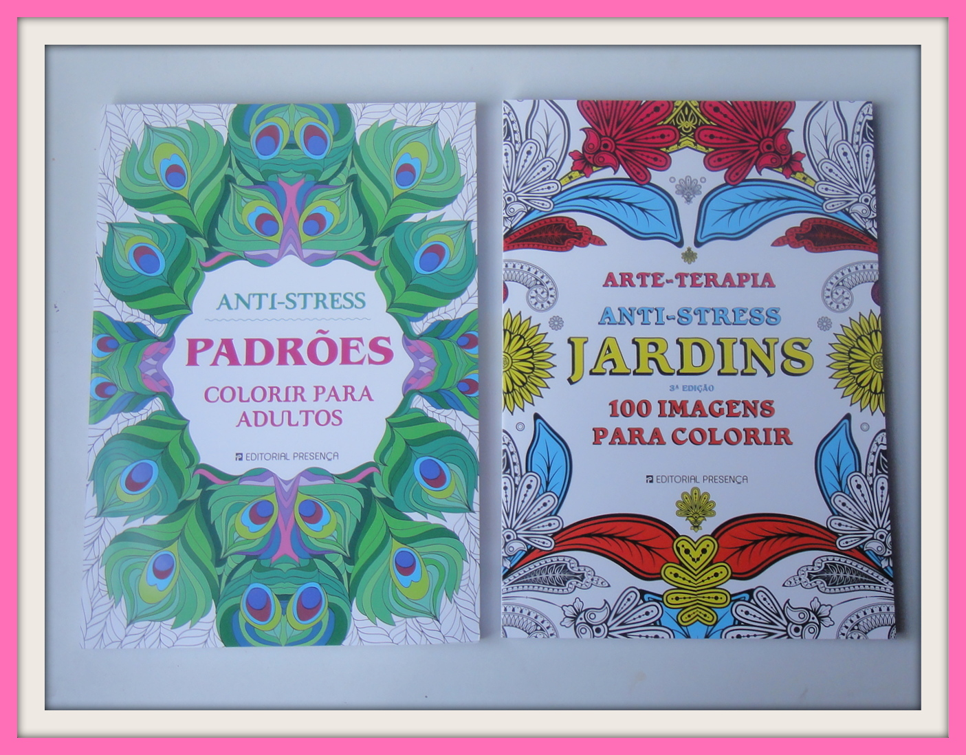 Arte Terapia Antistress Jardins  100 Imagens para Colorir  981€