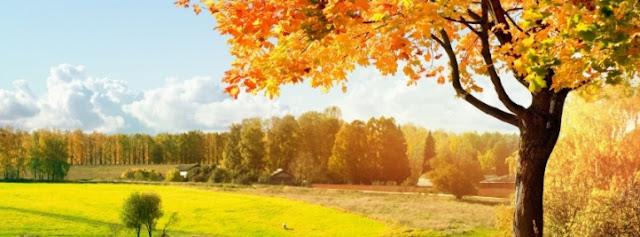ảnh bìa facebook đẹp nhất mùa thu