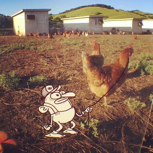 07-Egg-Farmer-Marty-Cooper-aka-Hombre-McSteez-Doodle-Ramblings-www-designstack-co