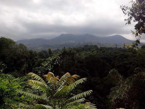 Alam Pegunungan 5