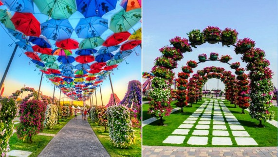 Dubai Miracle Garden!! | The Eccentricities of the World