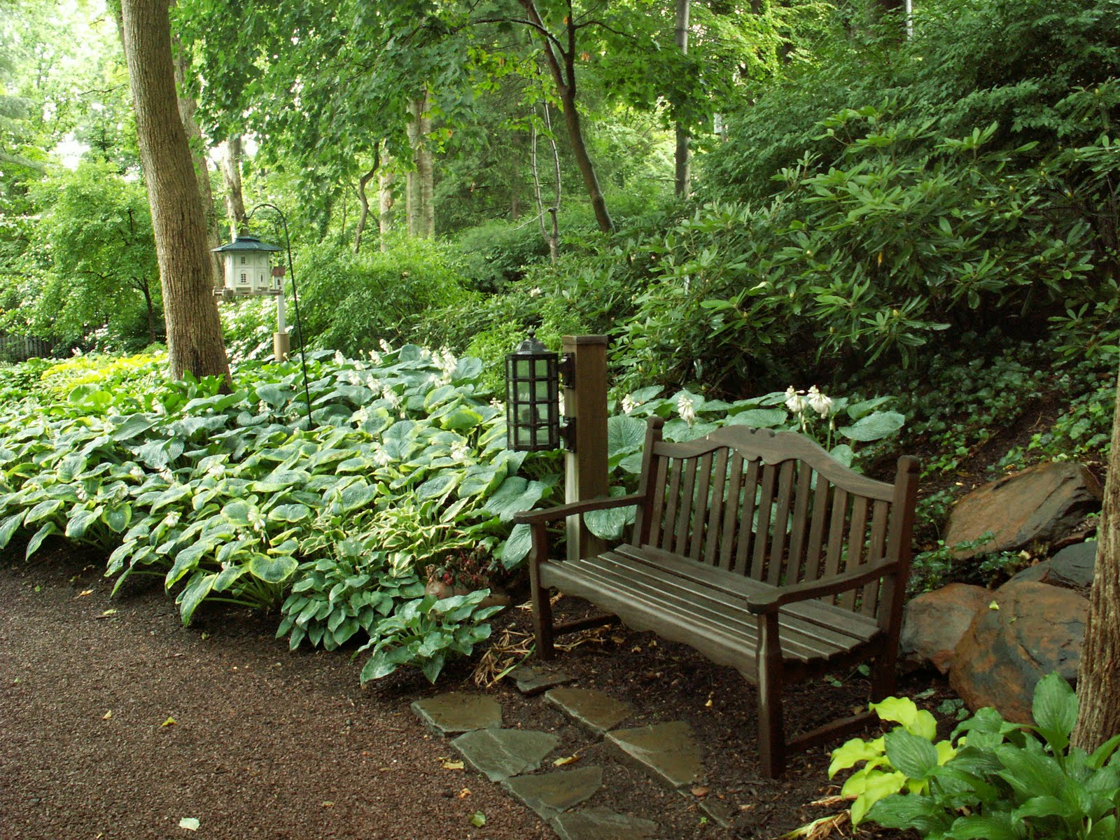 Woodland shade gardens for kaye blomeke shaded seating for Garden design ideas shady areas