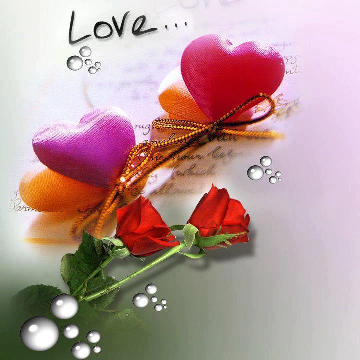 ... Sad Gujarati Images ~ Shayari Love and Sad in English,Urdu and Hindi