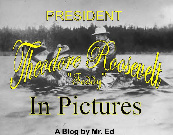 Theodore Roosevelt In Pictures