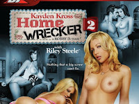 Keyden Kros Home Wrecker 2 (2012)