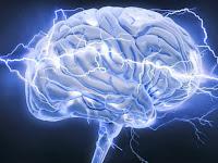 5 Misteri dalam Otak