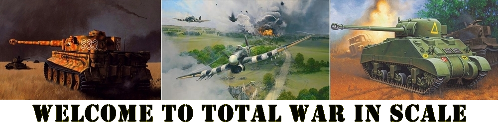 Total War in Scale