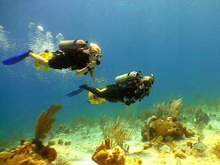 Diving in Cayman Islands