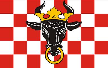 Flaga Województwa Wielkopolskiego