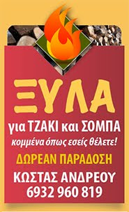 ΣΚΟΠΕΛΟΣ / ΞΥΛΑ ΓΙΑ ΣΟΜΠΑ ΚΑΙ ΤΖΑΚΙ