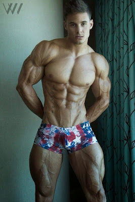 aesthetic muscle, bodybuilder, great abs, Logan Franklin, male fitness model, male model, muscle, physique, ripped muscle, vascular muscle,