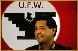 cesar chavez notes Cesar chavez, the united farm workers, and the question of unions in contemporary capitalism this review is conceived as a further contribution to the discussion of.