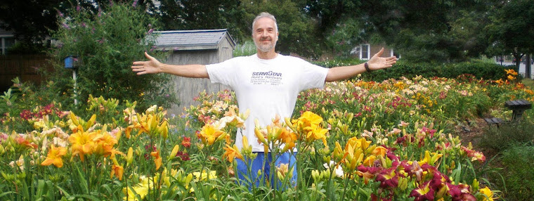 Mike Fleche Daylilies