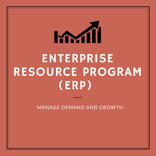 enterprise resource program manage demand and growth