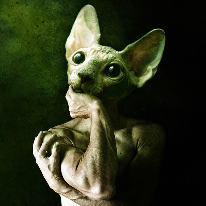 Animal humanoid