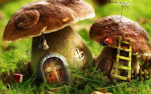 mushroom houses =)
