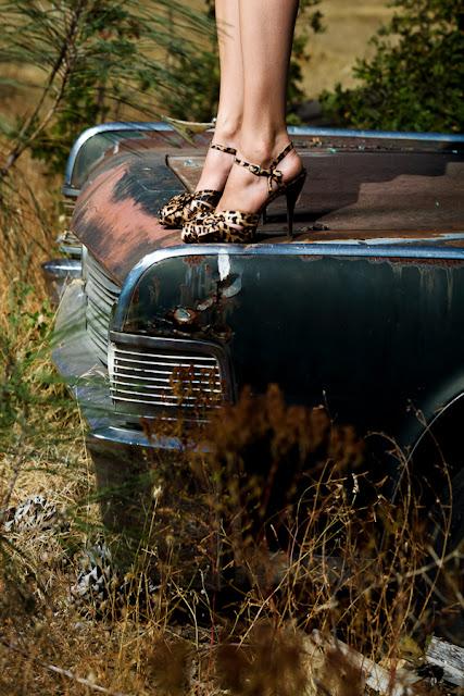 Leopard+Steve+Madden+Lux+heels