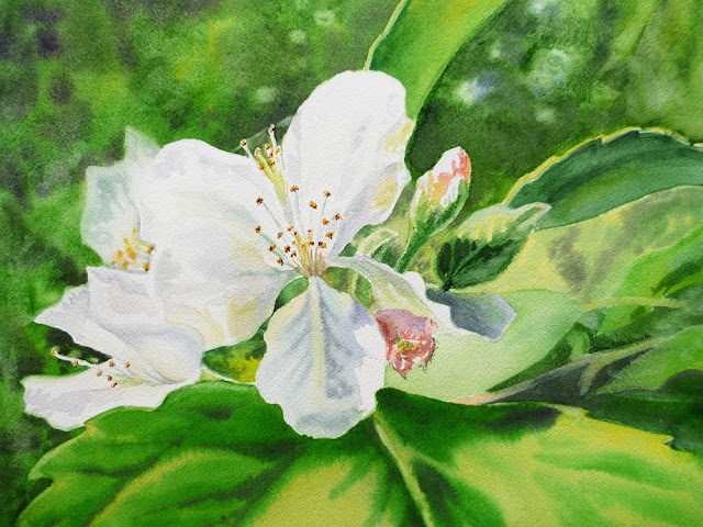 blossom realistic painting