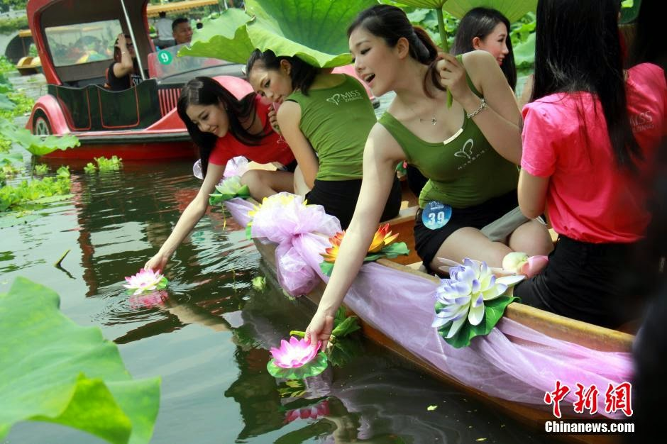 Young beautiful Chinese girls and lotus