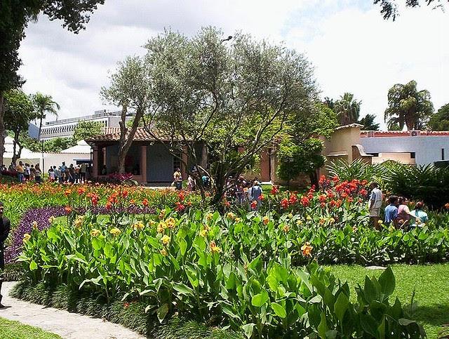 Garden center ejea paisajismo jard n de estancia i v - Garden center ejea ...