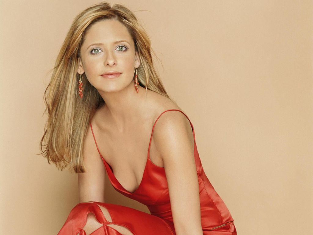 http://2.bp.blogspot.com/-KoZQPInW0po/TdHuMX2i1aI/AAAAAAAABPc/3xZLb8c5L-w/s1600/Outstanding+Snapshot+of+Sarah+Michelle+Gellar.jpg